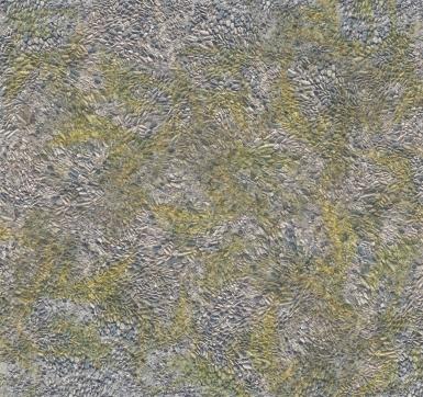 Land-Texture